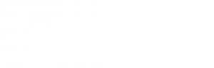 logo synchronex